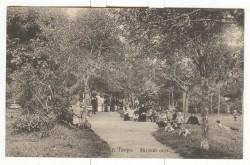 Детские садики. Старинная открытка