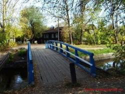 В поселковом парке пгт. Максатиха 13 июля состоялась акция  Лавки в цвет