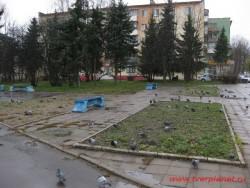 Сквер в честь С.Ф. Ниловского